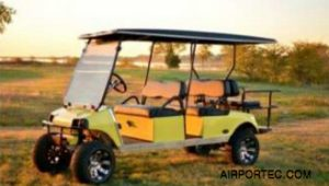 Custom Golf Carts Model GC05