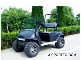 Custom Golf Carts Model GC09