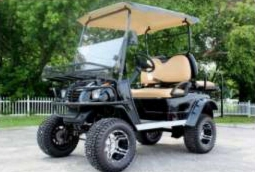 custom golf cart model gc11