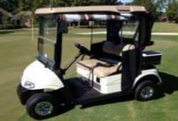 custom golf cart model gc12